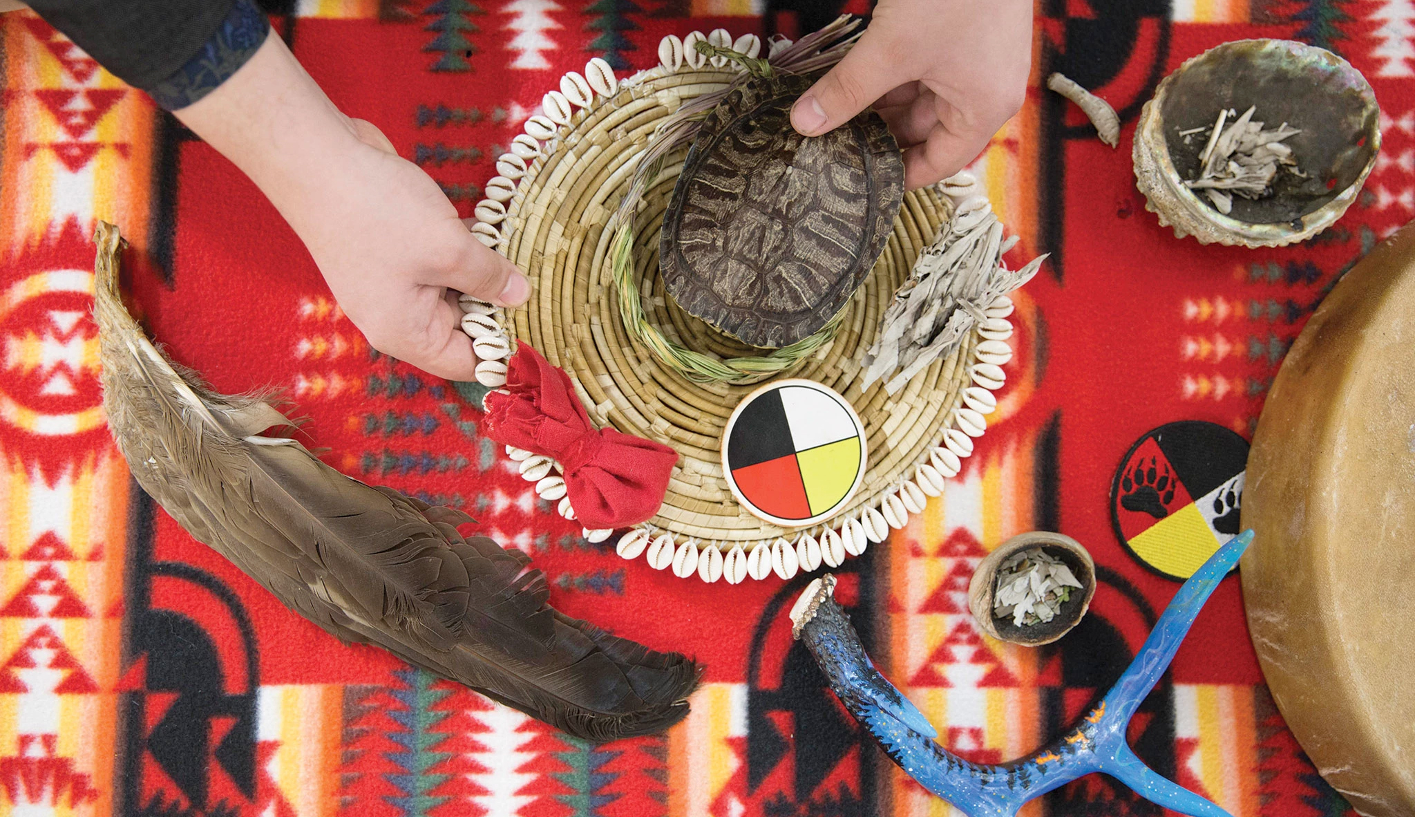 Indigenous eagle feather and turtle